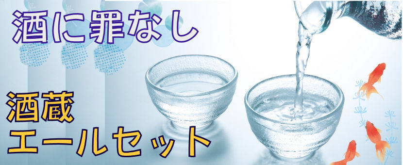 2020酒蔵エールセット表紙.jpg